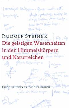 Die geistigen Wesenheiten in den Himmelskörpern und Naturreichen - Steiner, Rudolf