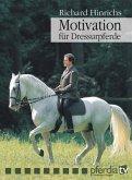 Motivation für Dressurpferde