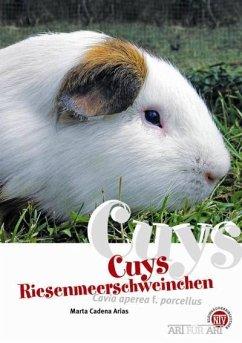 Cuys - Riesenmeerschweinchen