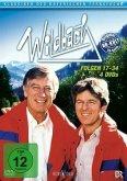 Wildbach - Folgen 17-32 (4 DVDs)