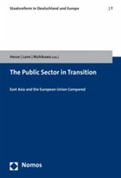 The Public Sector in Transition