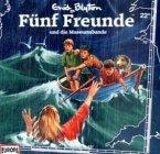 Fünf Freunde und die Museumsbande / Fünf Freunde Bd.22, 1 Audio-CD