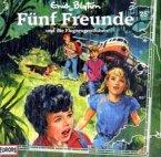Fünf Freunde und die Flugzeugentführer / Fünf Freunde Bd.25 (1 Audio-CD)