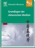 Grundlagen der chinesischen Medizin