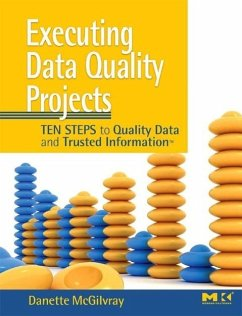 Executing Data Quality Projects