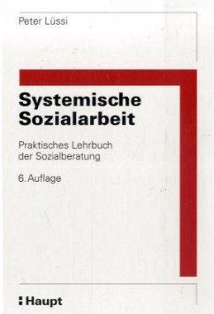 Systemische Sozialarbeit
