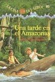 Una Tarde En El Amazonas (Afternoon on the Amazon)