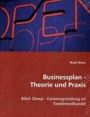 Businessplan - Theorie und Praxis