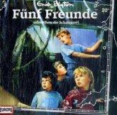 Fünf Freunde erforschen die Schatzinsel / Fünf Freunde Bd.20 (1 Audio-CD)