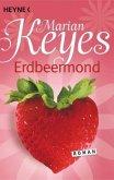 Erdbeermond / Familie Walsh Bd.4