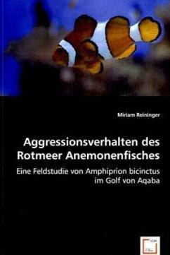 Aggressionsverhalten des Rotmeer Anemonenfisches