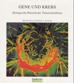Gene und Krebs