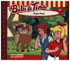Papis Pony / Bibi & Tina Bd.11 (1 Audio-CD)