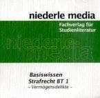 Basiswissen Strafrecht BT 1 - Vermögensdelikte, MP3-CD