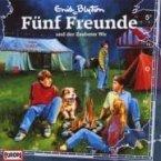Fünf Freunde und der Zauberer Wu / Fünf Freunde Bd.5 (1 Audio-CD)
