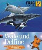 Wale und Delfine / Frag doch mal ... die Maus! Die Sachbuchreihe Bd.12