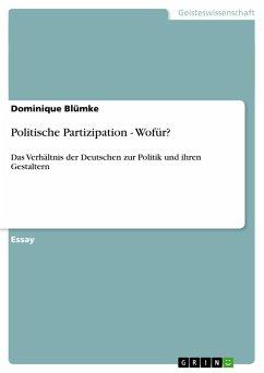 Politische Partizipation - Wofür?