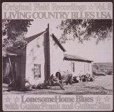 Living Country Blues Usa-Vol.08