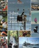 Leben am Zürichsee