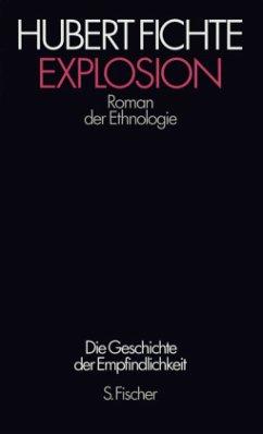 Die Geschichte der Empfindlichkeit VII. Explosion - Fichte, Hubert