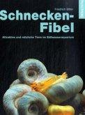 Schnecken-Fibel