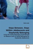 Steps Between, Steps Within: Adolescents and Stepfamily Belonging