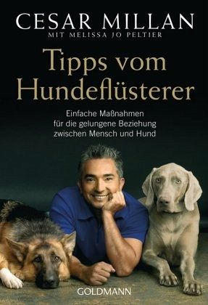 Tipps vom Hundeflüsterer - Millan, Cesar