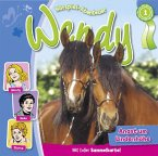 Wendy - Angst um Lindenhöhe, 1 Audio-CD