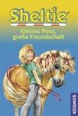 Sheltie - Kleines Pony, große Freundschaft