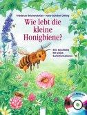 Wie lebt die kleine Honigbiene? / Hör gut hin (m. Audio-CD)