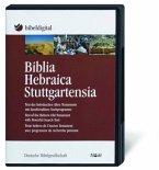 Biblia Hebraica Stuttgartensia, 1 CD-ROM / Bibelausgaben