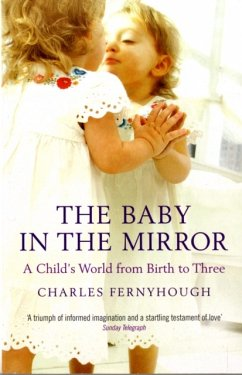 The Baby in the Mirror - Fernyhough, Charles
