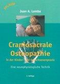 Craniosacrale Osteopathie in der Kinder- und Erwachsenenpraxis