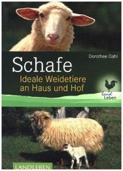 Schafe - Dahl, Dorothee