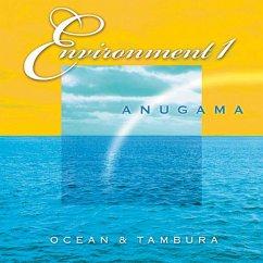 OCEAN & TAMBURA-ENVIROMENT 1 - ANUGAMA