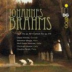 Horntrio Op.40 Und Klarinettentrio Op.114