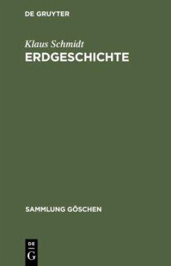 Erdgeschichte - Schmidt, Klaus