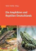 Die Amphibien und Reptilien Deutschlands