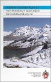 Alpinführer Walliser Alpen 4/5