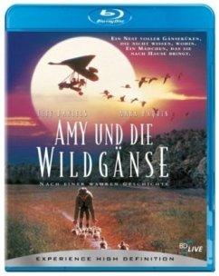 Amy & die Wildgänse