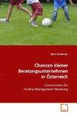 Chancen kleiner Beratungsunternehmen in Österreich
