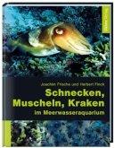Schnecken, Muscheln, Kraken im Meerwasseraquarium