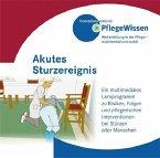 Akutes Sturzereignis, CD-ROM