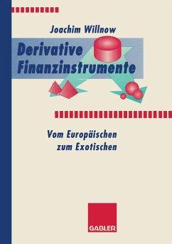 Derivative Finanzinstrumente - Willnow, Joachim