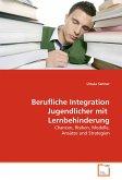 Berufliche Integration Jugendlicher mit Lernbehinderung