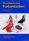 Die Süddeutschen Farbentauben