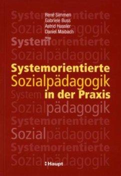 Systemorientierte Sozialpädagogik in der Praxis