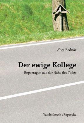 Der ewige Kollege - Bodnár, Alice