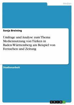 Umfrage und Analyse zum Thema Mediennutzung von Türken in Baden-Württemberg am Beispiel von Fernsehen und Zeitung