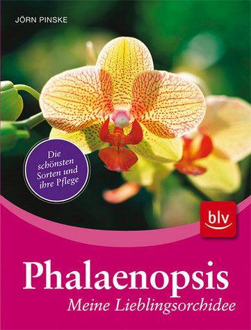 phalaenopsis meine lieblingsorchidee die sch nsten sorten und ihre pflege von j rn pinske. Black Bedroom Furniture Sets. Home Design Ideas